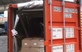 Handling Shipments in Argentina Since 1838 - Delfino Global