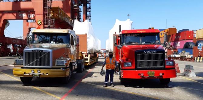 Comprehensive Forwarding Services at Translogistics Solution in Peru
