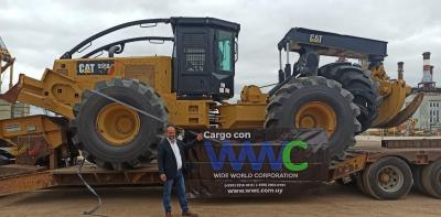 Comprehensive Freight Forwarding Services at Wide World Corporation in Uruguay