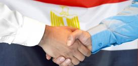 Quality, Agility & Efficiency at SQL Shipping in Egypt